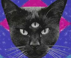 "Cover art for the Never Say Never album ""Black Cat."""